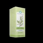 Tea-tree-Melaleuca-alternifolia